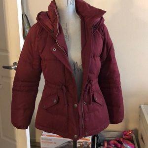Burgundy Hollister coat